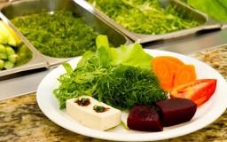 Saladas orgânicas